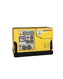 Tragbarer Stromerzeuger ENDRESS ESE 908 DBG ES DIN silent