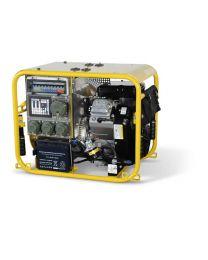 Tragbarer Stromerzeuger ENDRESS ESE 954 DBG ES DIN